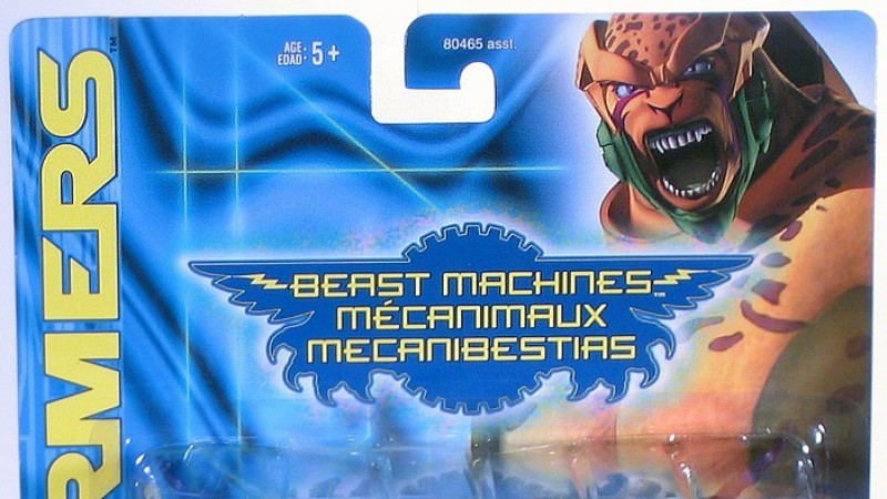 Beast_Machines_Blackarachnia_APackage