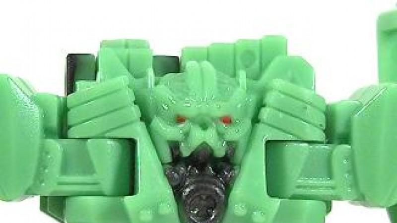 Head Closeup.jpg